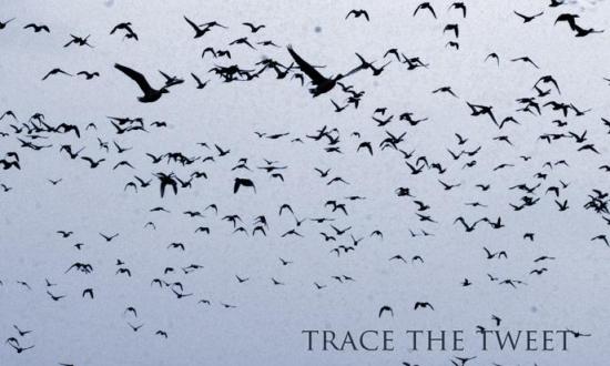 Obrázek k akci Trace the tweet